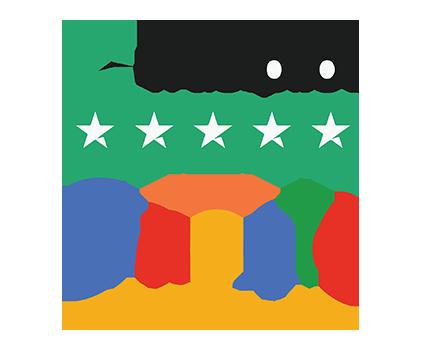 Googe Reviews