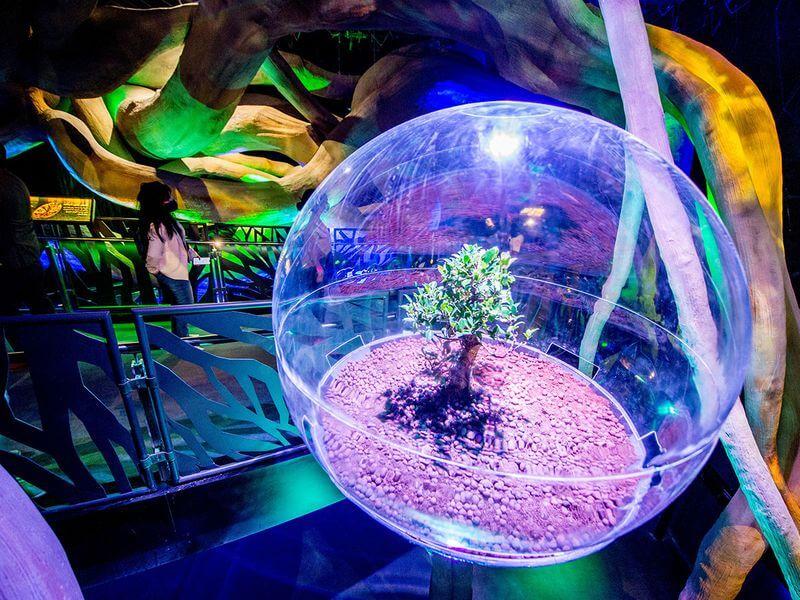 10 Terra - Time to Visit Terra  - The Sustainability Pavilion at Dubai Expo 2020